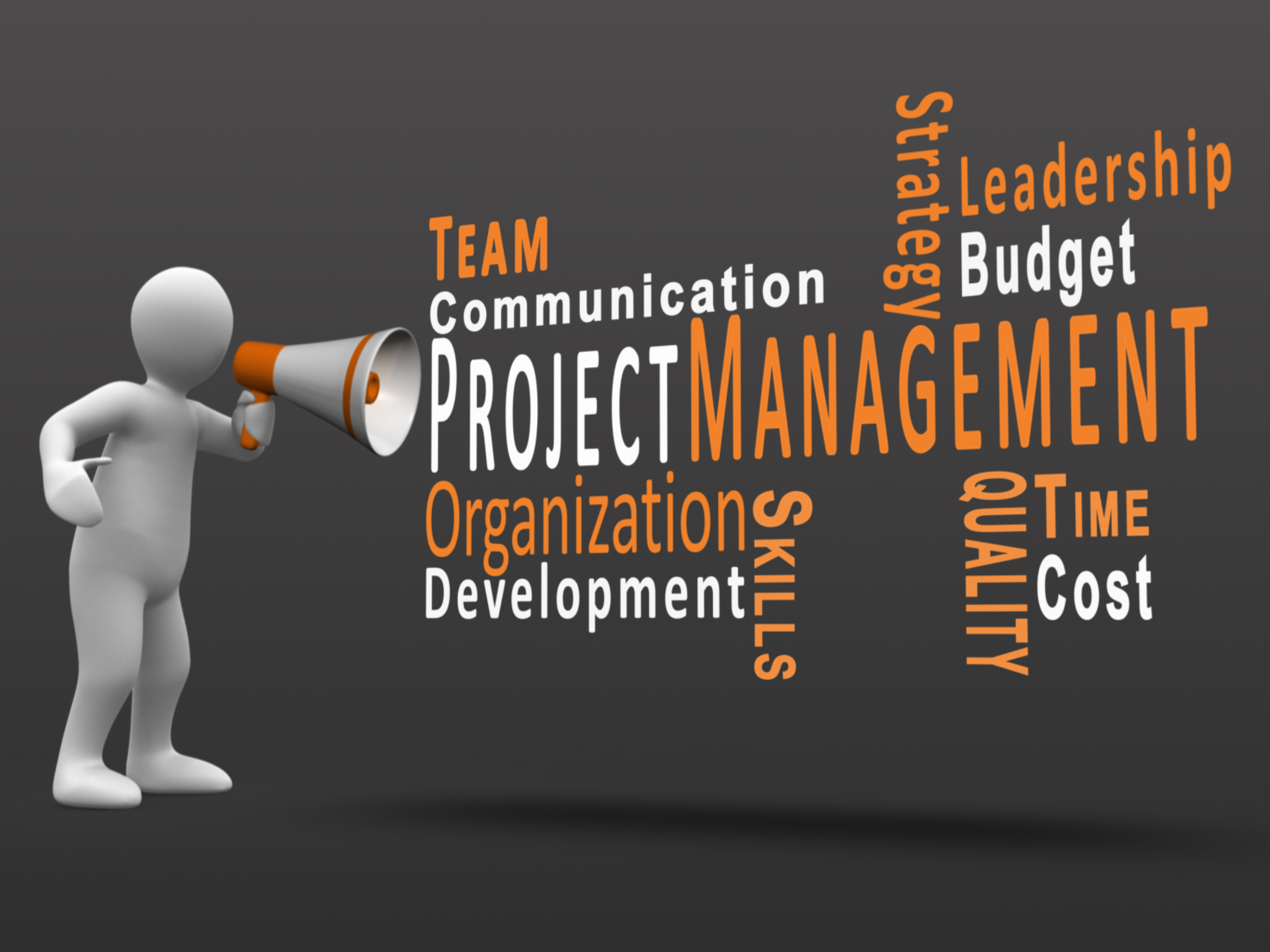 Winning More Business with a Project Management Software Solution – Project Management