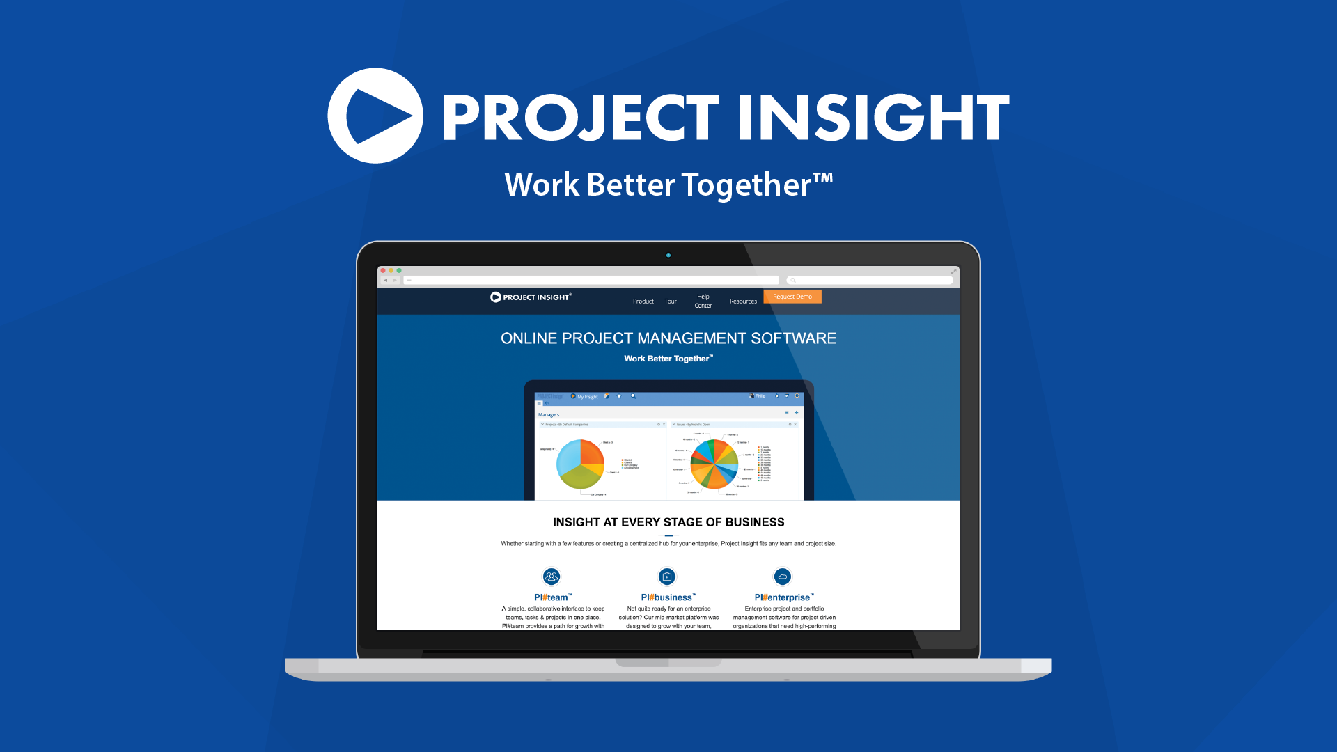Project Management Software Project Insight